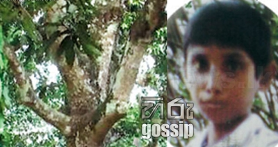 Father tried to commit suicide on the same tree son died